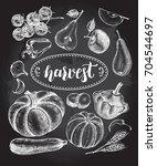 ink hand drawn set of...   Shutterstock .eps vector #704544697