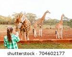 cute little girl feeding... | Shutterstock . vector #704602177