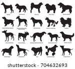 Stock vector vector set of different breeds dogs silhouettes isolated in black color on white backround part 704632693