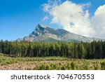 summertime landscape with... | Shutterstock . vector #704670553