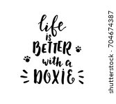 life is better with a doxie ... | Shutterstock .eps vector #704674387