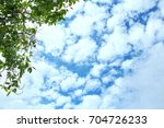 Small photo of The sky is very beautiful there is amass of white cloud.There is a tree in the background.