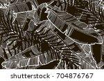 tropical background. monochrome ...   Shutterstock . vector #704876767