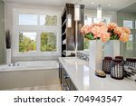 contemporary master bathroom... | Shutterstock . vector #704943547
