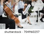 hands girl playing cello in... | Shutterstock . vector #704960257