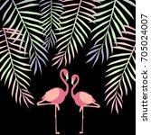 flamingo illustration | Shutterstock .eps vector #705024007