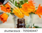 marigold extract in a small... | Shutterstock . vector #705040447