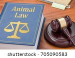 a law book with a gavel  ...   Shutterstock . vector #705090583