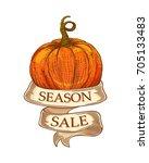 season sale ribbon with sketch... | Shutterstock .eps vector #705133483