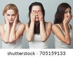 close up portrait of three... | Shutterstock . vector #705159133
