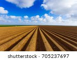 plowed agricultural fields... | Shutterstock . vector #705237697
