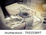 thai women scientists the... | Shutterstock . vector #705253897