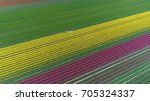 aerial photo of colorful tulip... | Shutterstock . vector #705324337