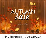card of autumn sale decorated... | Shutterstock . vector #705329227