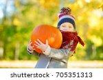 adorable little girl having fun ... | Shutterstock . vector #705351313