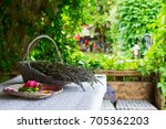 ribbons and cutted lavender... | Shutterstock . vector #705362203