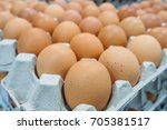 Small photo of egg