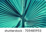 abstract stripes from nature ... | Shutterstock . vector #705485953