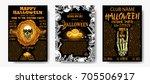 halloween costume party... | Shutterstock .eps vector #705506917