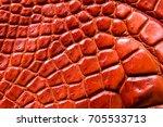 freshwater crocodile belly skin ... | Shutterstock . vector #705533713
