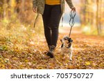 woman goes with a dog walking... | Shutterstock . vector #705750727