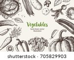 vegetable frame. hand drawn... | Shutterstock .eps vector #705829903