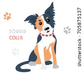 cute funny tricoloured dog... | Shutterstock .eps vector #705875137