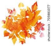 golden autumn  leaves of... | Shutterstock .eps vector #705881077