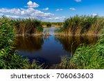 lake neusiedl  naturepark...   Shutterstock . vector #706063603