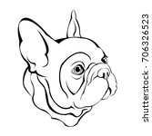 french bulldog. vector... | Shutterstock .eps vector #706326523