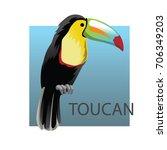 cartoon  toucan  colorful...   Shutterstock .eps vector #706349203