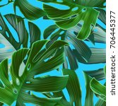 tropical palm leaves. seamless...   Shutterstock . vector #706445377
