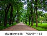 summer park  | Shutterstock . vector #706494463