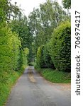 Small photo of country lane