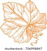 engraving style vector... | Shutterstock .eps vector #706998847