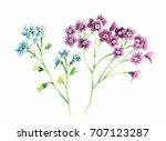 the amorous feelings of... | Shutterstock . vector #707123287