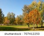 Autumn  Fall  Leaf Fall  Fall...