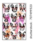 portraits of french bulldog...   Shutterstock .eps vector #707499523