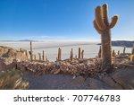 isla incahuasi  salar de uyuni  ...   Shutterstock . vector #707746783