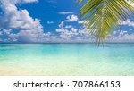 palm and sea with sky. tropical ... | Shutterstock . vector #707866153