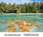 split image over and under sea... | Shutterstock . vector #708055633