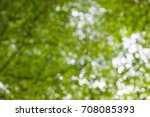abstract blurred green natural... | Shutterstock . vector #708085393
