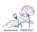 ink  pencil  watercolor flower...   Shutterstock .eps vector #708097567