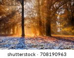 magical autumn scenery with... | Shutterstock . vector #708190963