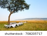 luxury bush breakfast in masai... | Shutterstock . vector #708205717