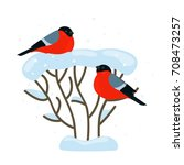 a pair of bullfinches are... | Shutterstock .eps vector #708473257