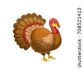 live turkey. vector... | Shutterstock .eps vector #708521413
