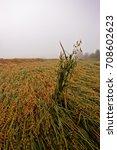the heavy autumn rains have...   Shutterstock . vector #708602623