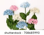 artificial flowers on white... | Shutterstock . vector #708685993