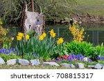 Sunlit Spring Flowers